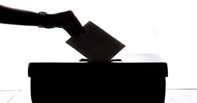 Brevstemme til EP-valg